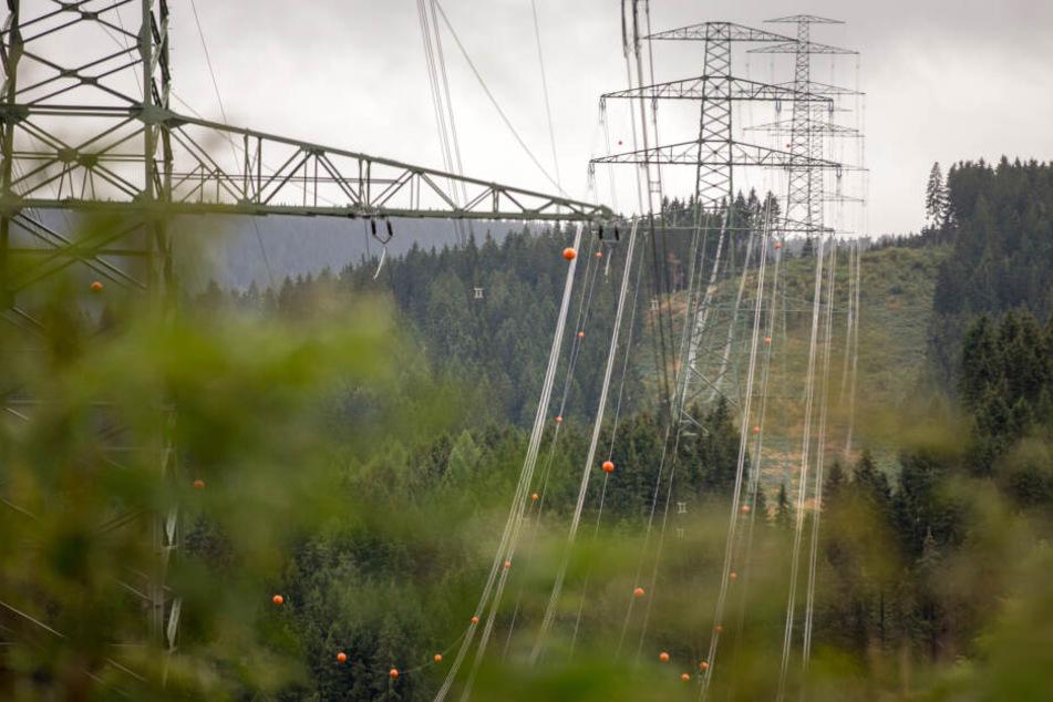 Künstliche Intelligenz soll das Stromnetz stabilisieren und die Versorgung gewährleisten.