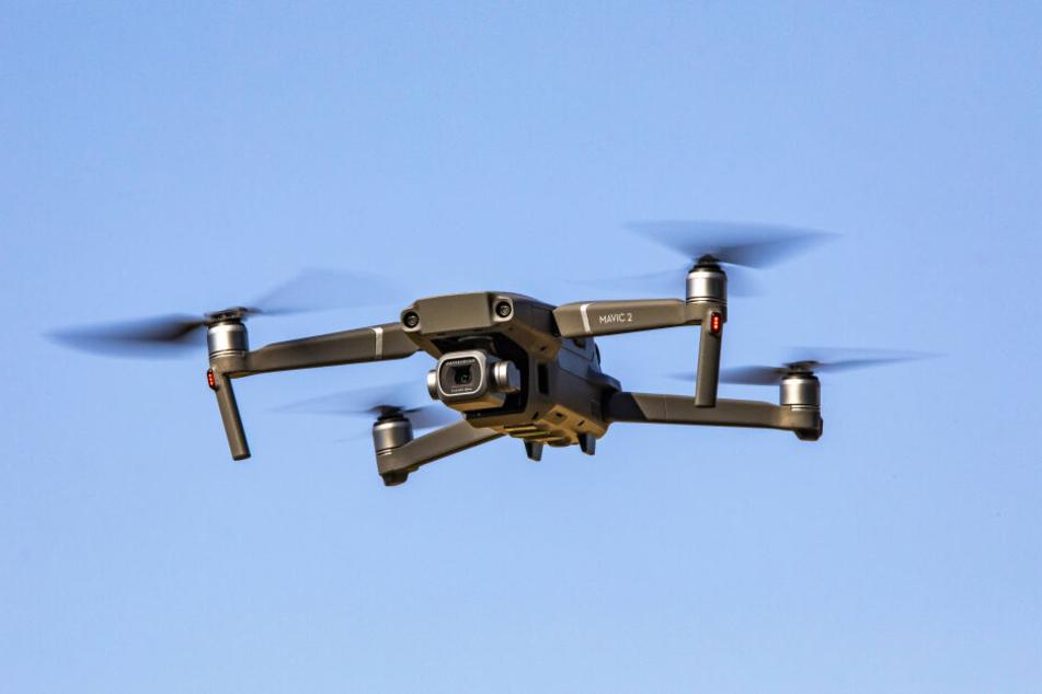 Mit einem Multicopter sollen morsche Bäume aufgespürt werden.