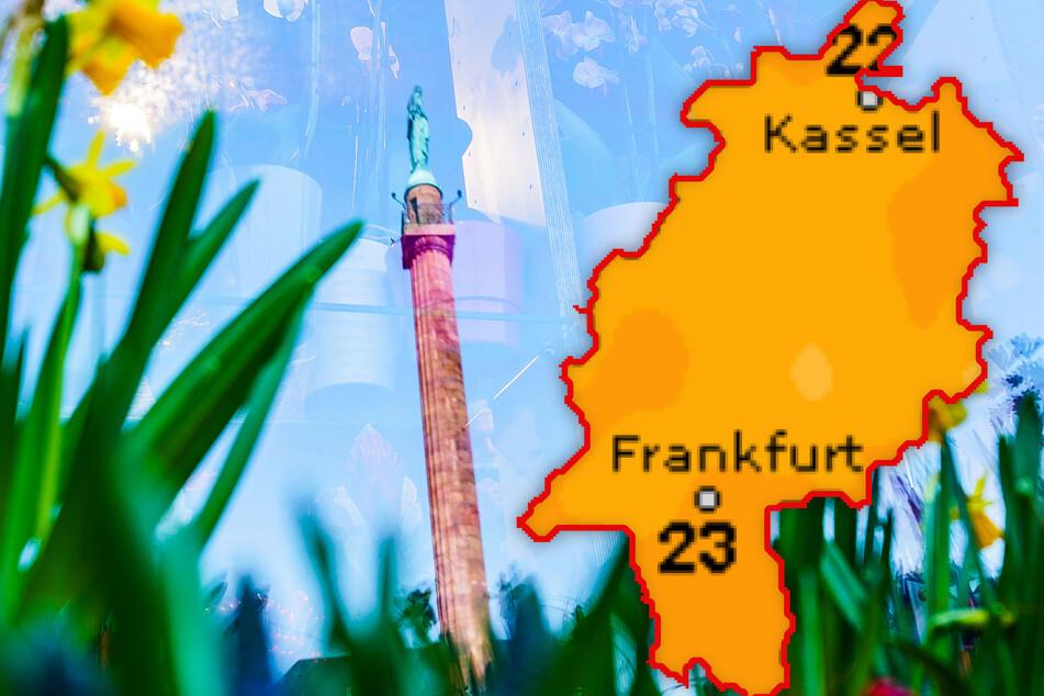 """Das Wahrzeichen der Wissenschaftsstadt Darmstadt, der """"Lange Ludwig"""" spiegelt sich in der Scheibe des Blumengeschäfts. In den kommenden Tagen wird es in Hessen frühlingshaft."""