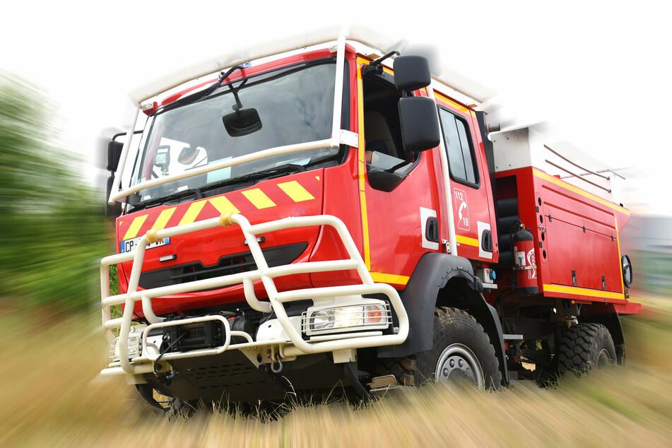 Die Feuerwehr ist in Köln zu einem tierischen Einsatz ausgerückt. (Symbolbild)