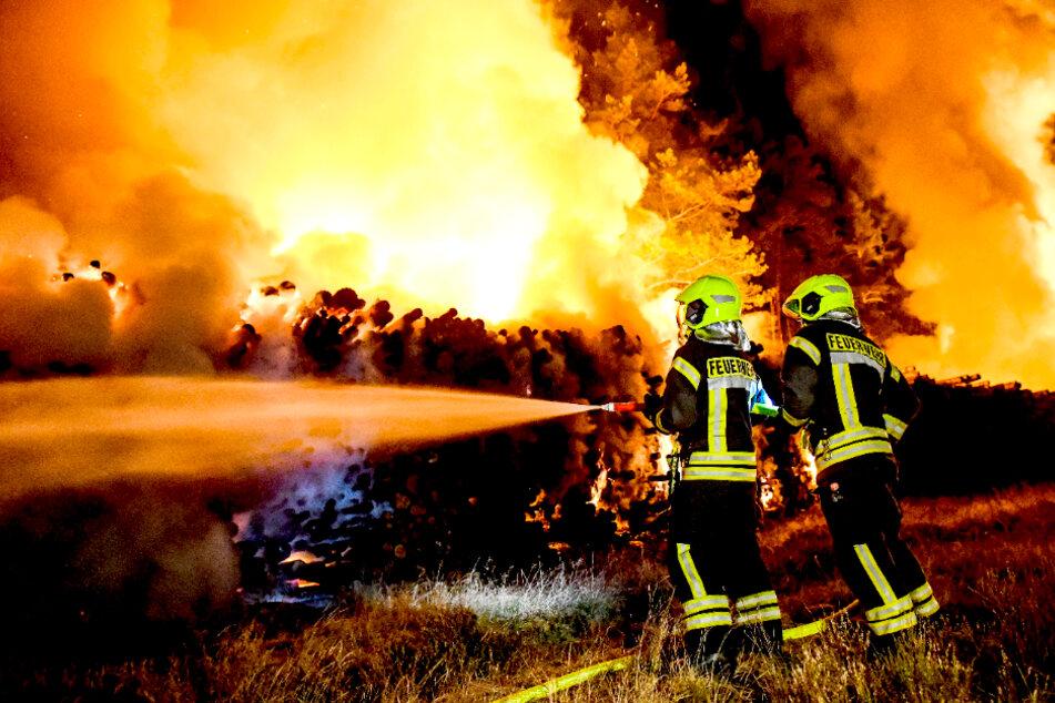 Riesige Flammen! 25 Hektar Wald in Brandenburg in Gefahr