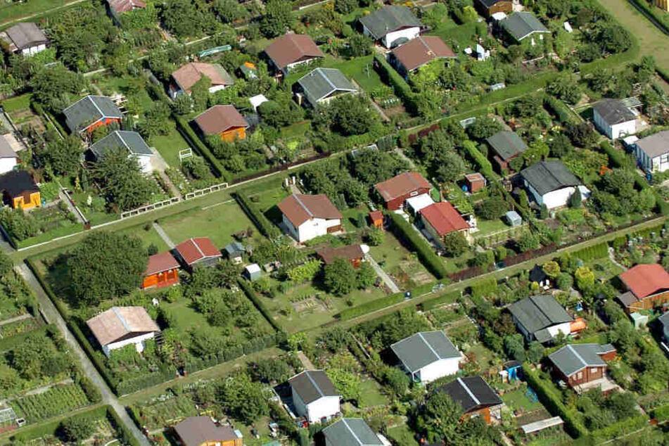 In Sachsen gab es laut Verfassungsschutz im Jahr 2018 insgesamt 44 Fälle, in denen sich Rechte in Gartenparzellen trafen.