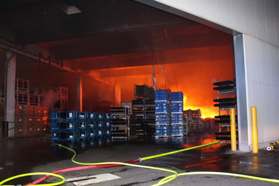 Über Stunden kämpften die Einsatzkräfte gegen die Flammen.
