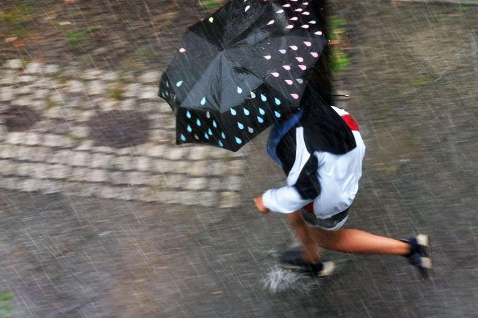 Am Donnerstag kam es erneut zu Starkregen in Berlin. Die Feuerwehr musste innerhalb von wenigen Minuten über 50 mal ausrücken.