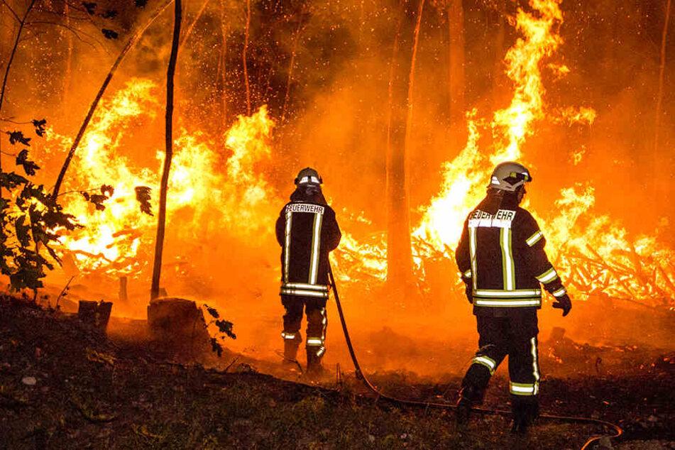 Zwischen Burkau und Schönbrunn gerieten Heuballen in Brand.