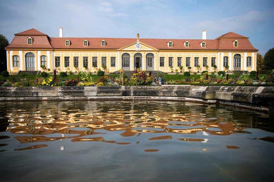 Noch liegt Stille über dem Barockgarten Großsedlitz. Doch wie lange noch?