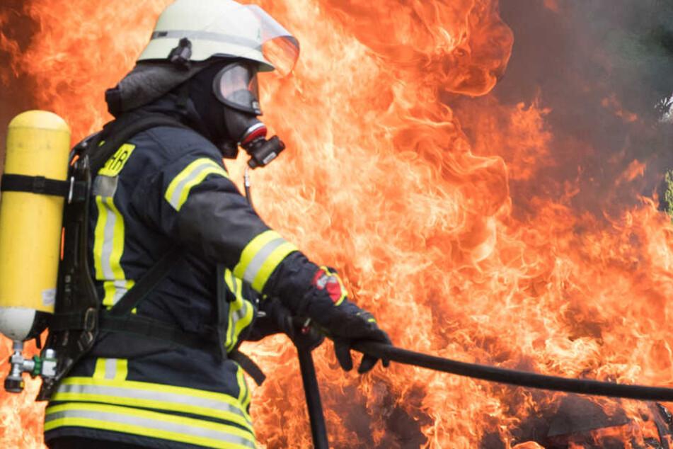 Während der Fahrt brach Feuer aus | Kunsthändler-Bus geht in Flammen auf
