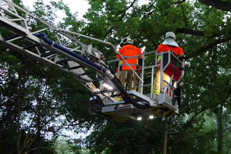 Unwetter im Raum Leipzig: Feuerwehr rückt zu ersten Sturmschäden aus