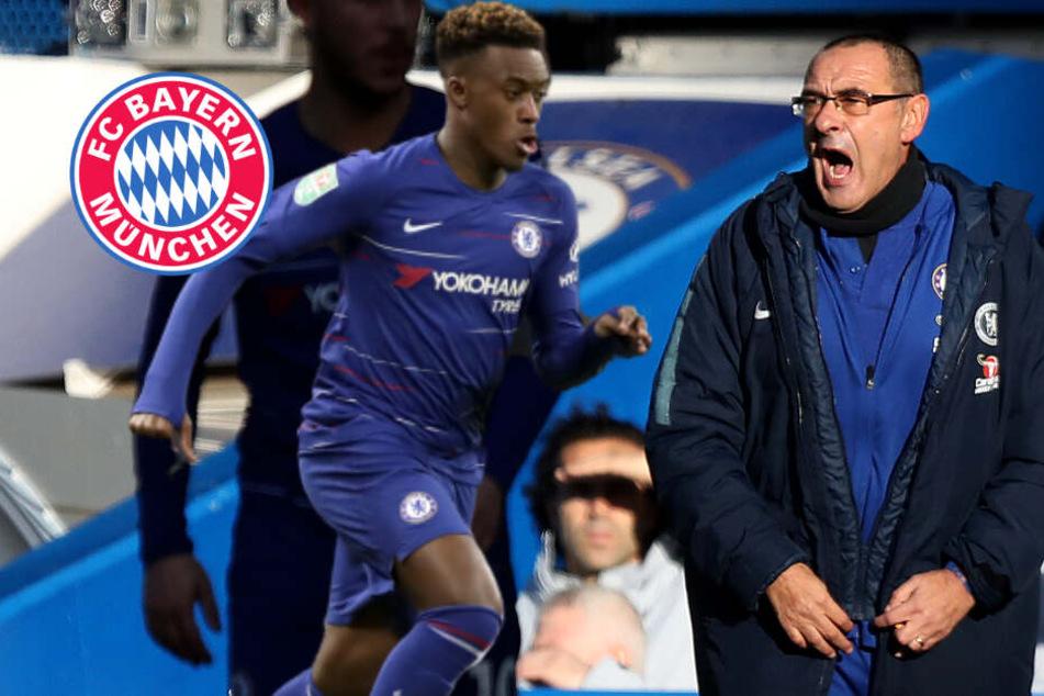 Wegen Hudson-Odoi: Chelsea-Coach Sarri stinksauer auf FC Bayern!