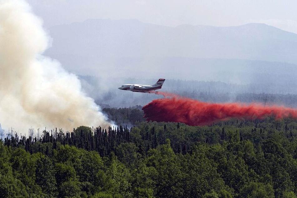 Ein Conair AVRO RJ85 AT-Löschflugzeug lässt Löschmittel über einem Waldbrand ab.
