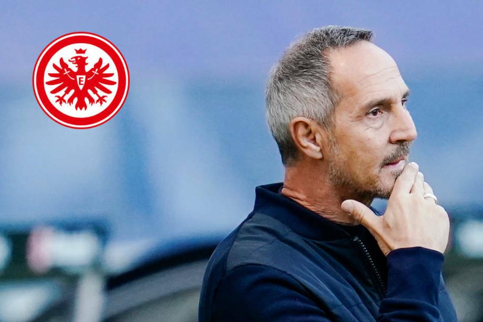 Auch das noch: Verliert Eintracht Frankfurt nach Fredi Bobic jetzt Adi Hütter?!
