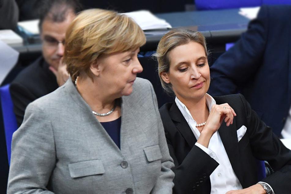AfD-Bedingung: Angela Merkel (CDU) soll nicht Kanzlerin sein.