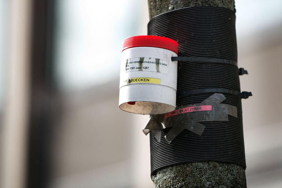 Dieser Passivsammler wurde bisher als Auswertung genutzt, um die Stickoxidwerte zu messen.