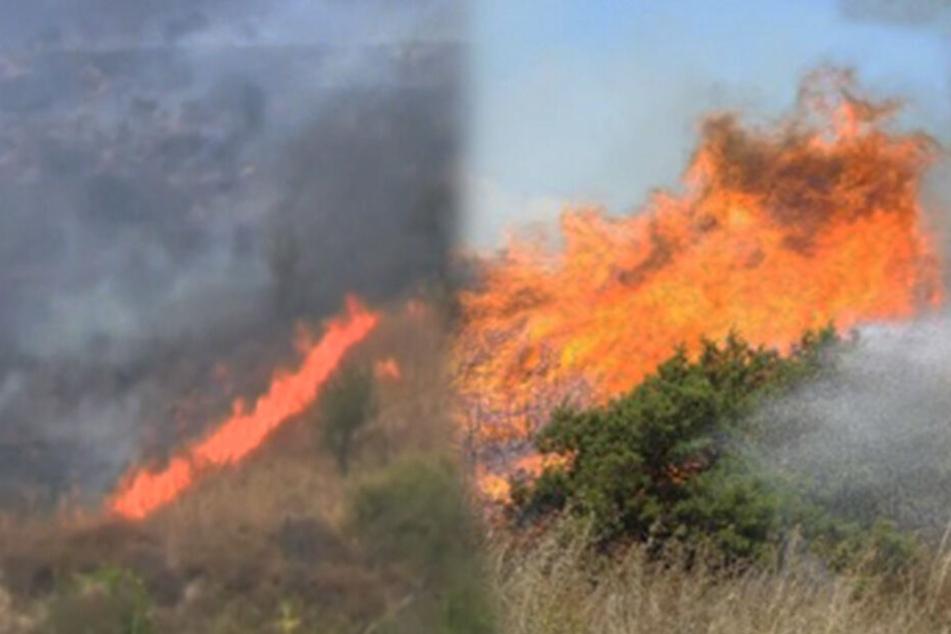 Auf Zypern brach ein heftiger Brand aus.