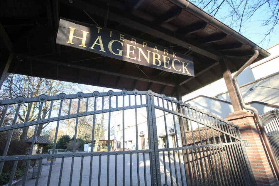 Die Tierpark Hagenbeck ist wegen Vogelgrippe derzeit geschlossen.
