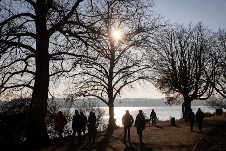 Unter kahlen Bäumen sind Menschen bei Sonnenschein zu einem Spaziergang an der Außenalster unterwegs.