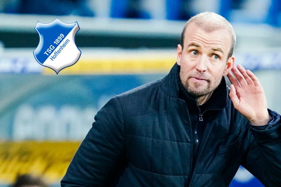 Darf Hoeneß Hoffenheim trotz Klatsche gegen Schalke weiter trainieren?