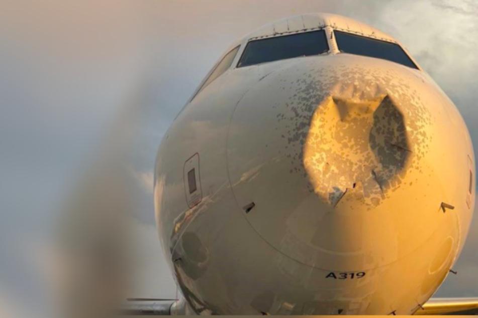 Fette Delle an Flugzeugnase: War es ein Vogel oder etwas anderes?