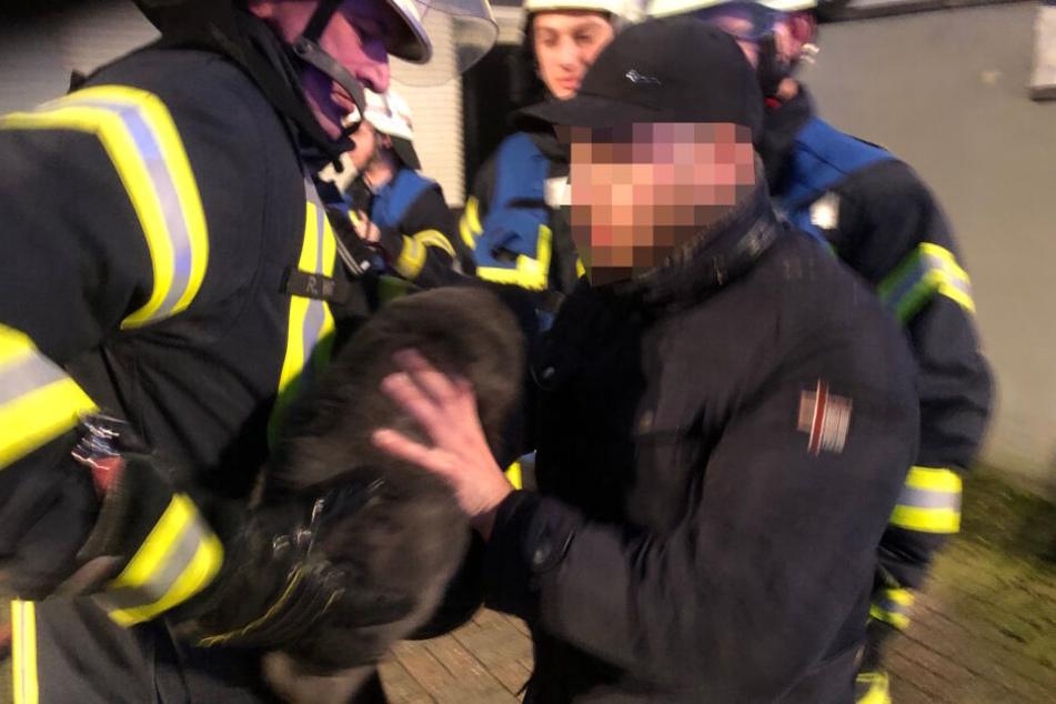 In letzter Minute konnte die Familienkatze aus der Brandwohnung gerettet werden.