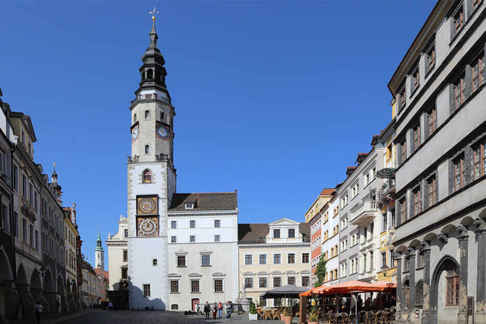 Wer erobert den Chefsessel im Görlitzer Rathaus? Das Kandidaten-Rennen wird sachsenweit gespannt verfolgt.