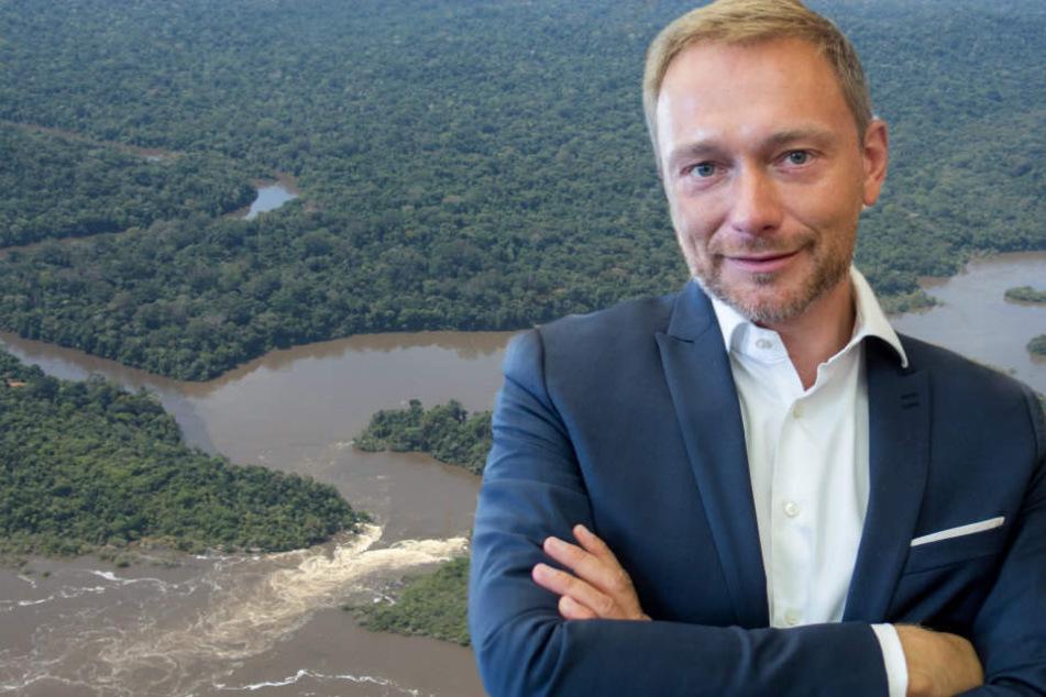 Christian Lindner: Deutschland sollte für Milliarden Euro Regenwald kaufen