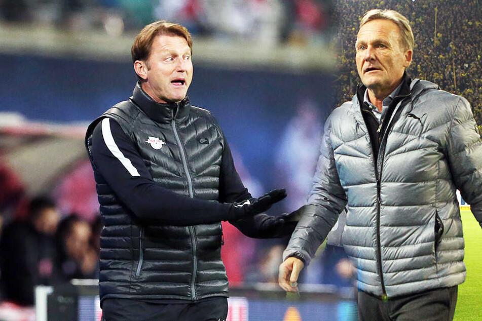 Ralph Hasenhüttl (l.) reagierte direkt auf die Kritik von Dortmund Bass Watzke (r.)
