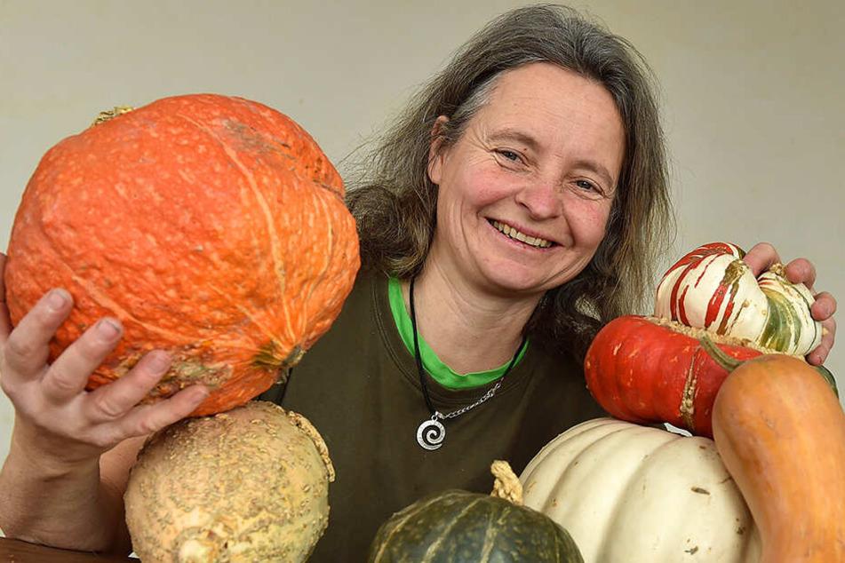 Retter der seltenen Pflanzen: Gentechnik verdrängt in Sachsen alte Sorten