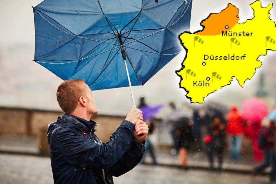 Am Dienstag wird es in ganz Nordrhein-Westfalen ziemlich stürmisch.