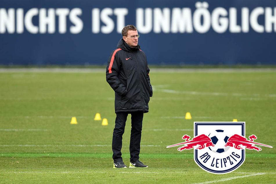Rangnick hat sein Amt in Salzburg niedergelegt. Erfüllt RB Leipzig somit alle Bedingungen für eine Teilnahme an der Champions League?
