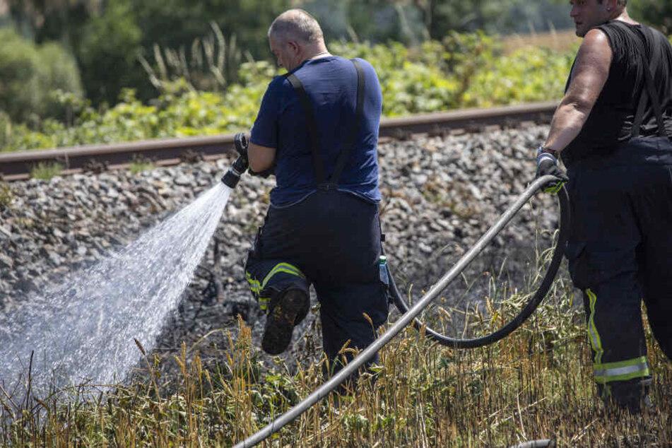 Das Feuer bedrohte auch eine angrenzende Bahnlinie.