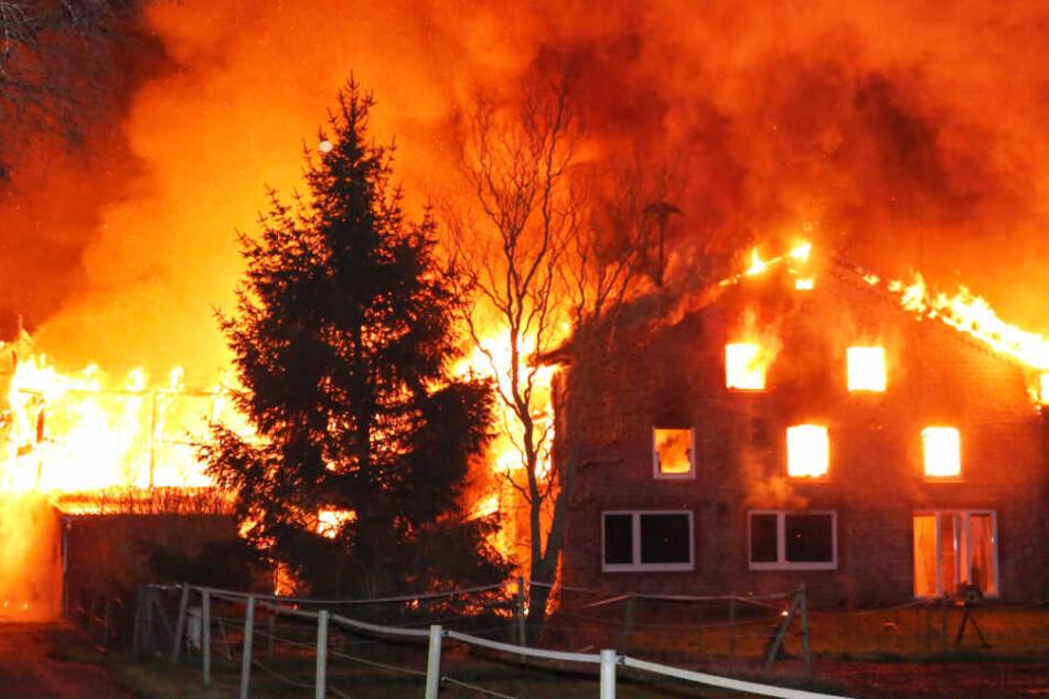 Der Bauernhof in Kiebitzreihe geht komplett in Flammen auf.