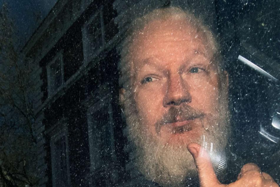 Assange zu 50 Wochen Haft verurteilt