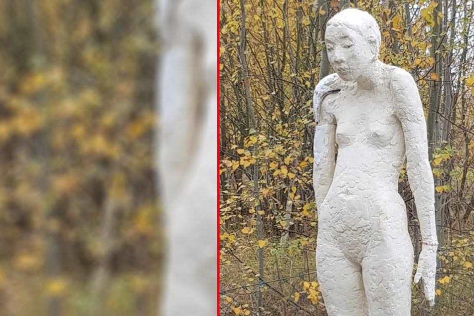"""Regungslos und ohne Begleitung! Wem gehört diese """"nackte Frau""""?"""