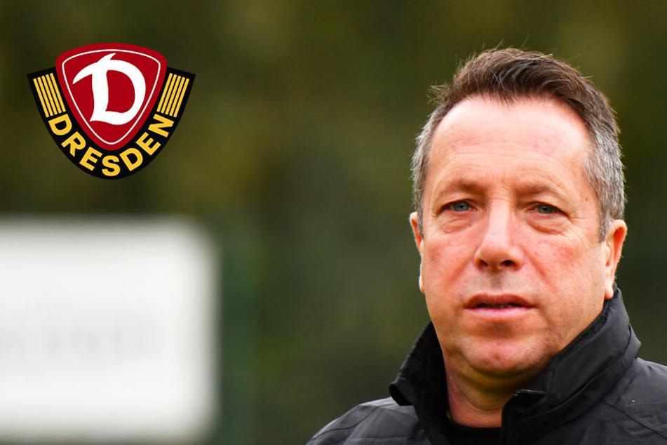 Dynamo Dresden: Die letzten Schwächen wegfeilen!