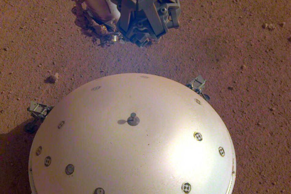 """Dieses von NASA/JPL-Caltech zur Verfügung gestellte Foto zeigt das gewölbte Wind- und Wärmeschild der Nasa-Sonde """"InSight""""."""