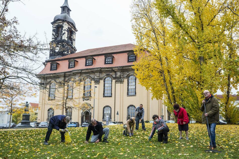 """Gemeinsam sind wir stark! Die Teilnehmer des Projekts """"Chancen für Chancenlose"""" stecken Frühblüher auf der Wiese an der Annenkirche in Dresden."""