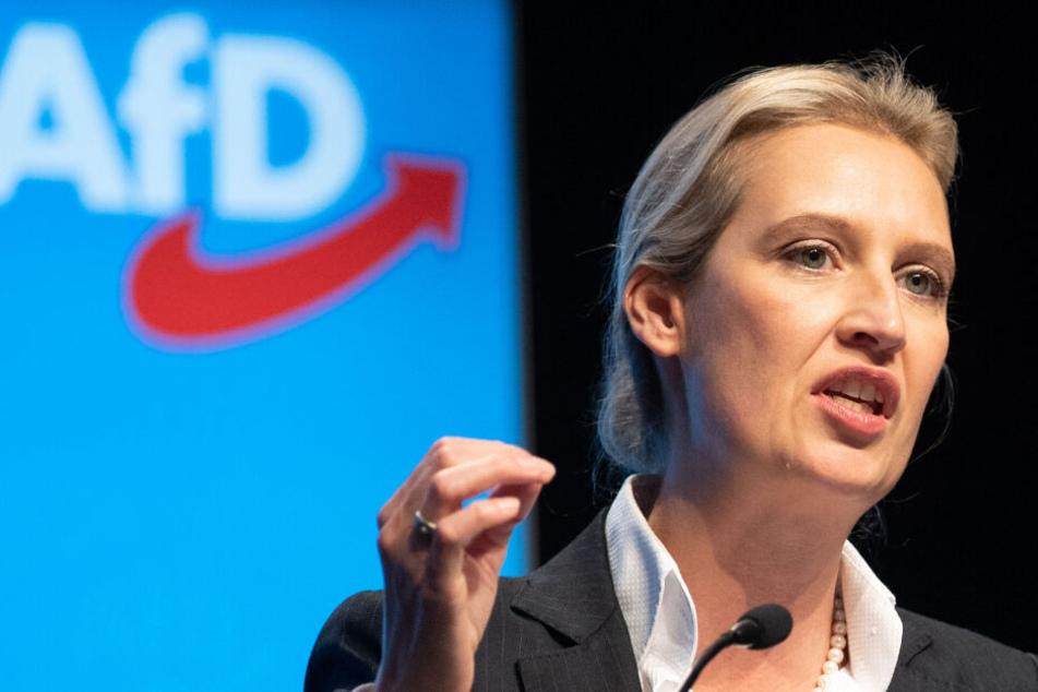 Showdown bei AfD-Parteitag: Kommt Alice Weidel mit Kampfkandidatur an die Macht?