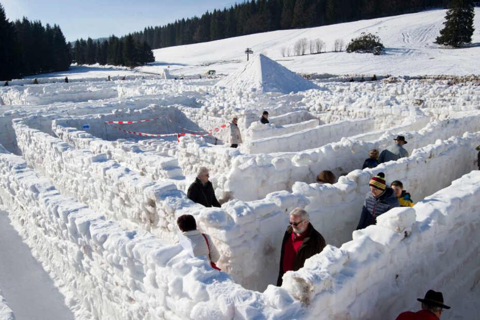 Mittlerweile waren rund 4500 Besucher im Schneelaybrinth von Bernau.