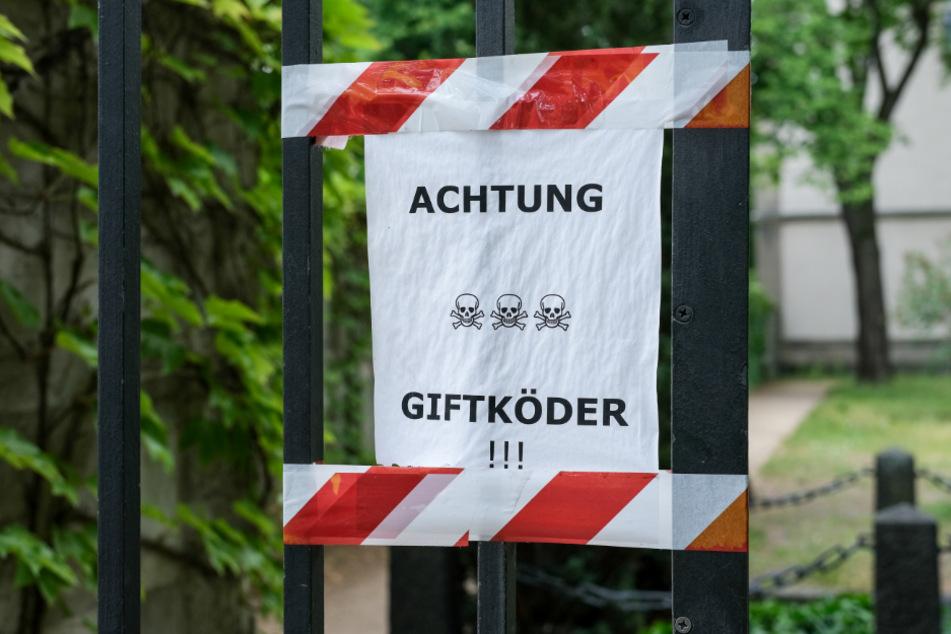 Wie viele Hunde Opfer von Giftködern in Deutschland werden, ist nicht statistisch erfasst. (Symbolbild)