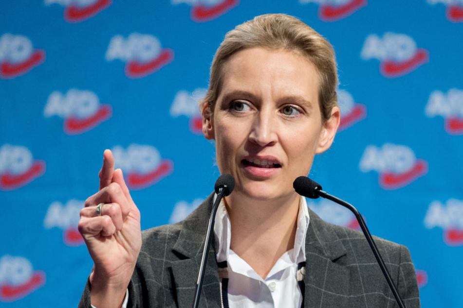 Von illegalen Parteispenden will Alice Weidel nichts gewusst haben.
