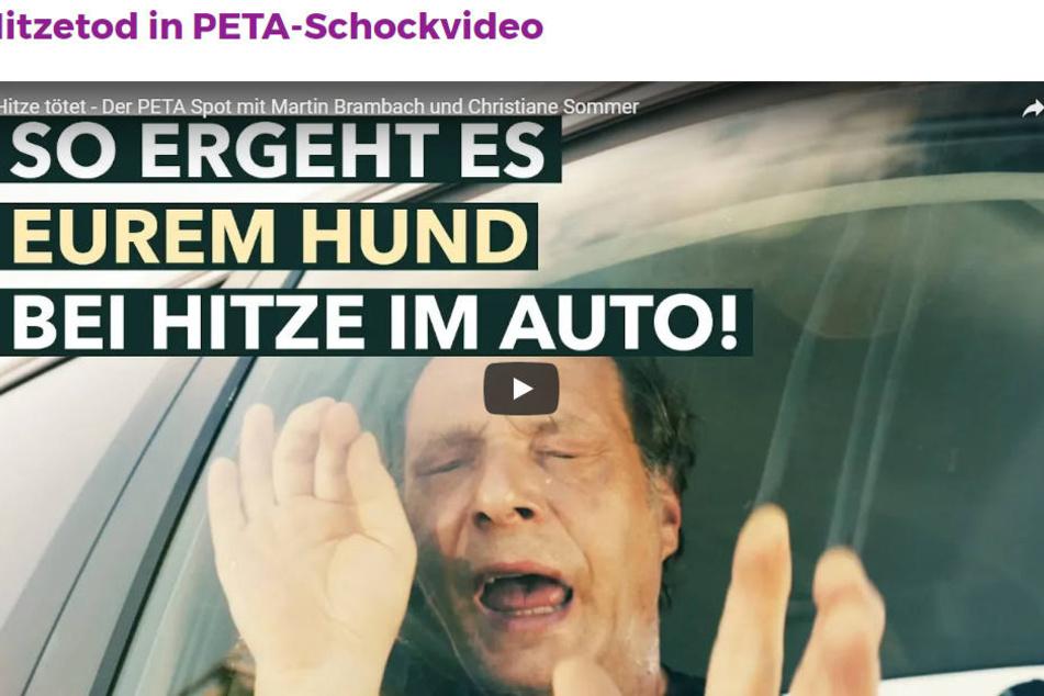 Die 2018er PETA-Kampagne ist sehr deutlich.