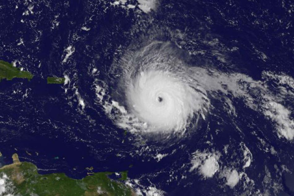 """""""Irma"""" wird vorraussichtlich am Mittwoch die Karibik erreichen und eine Geschwindigkeit von 280 km/h haben."""
