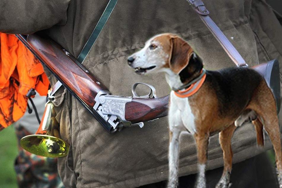 Als der Hund neben dem Gewehr rumtobt, löst sich ein Schuss (Symbolfoto)