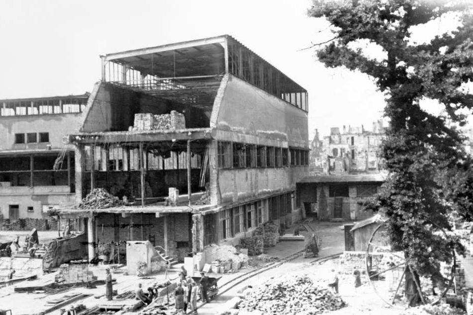 Das Hygiene-Museum wurde komplett zerstört...