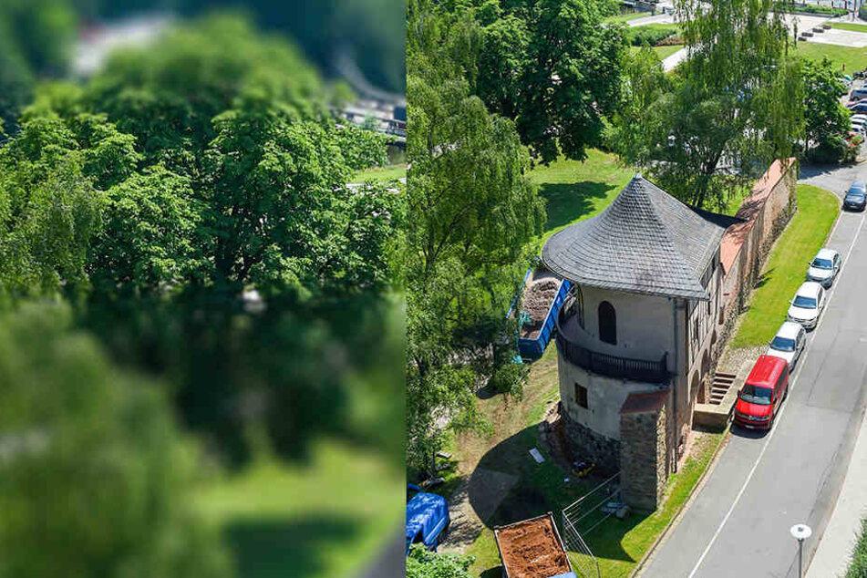 Der Pulverturm in Zwickau, letztes sichtbares Zeugnis der einstigen Stadtbefestigung, wird derzeit saniert.