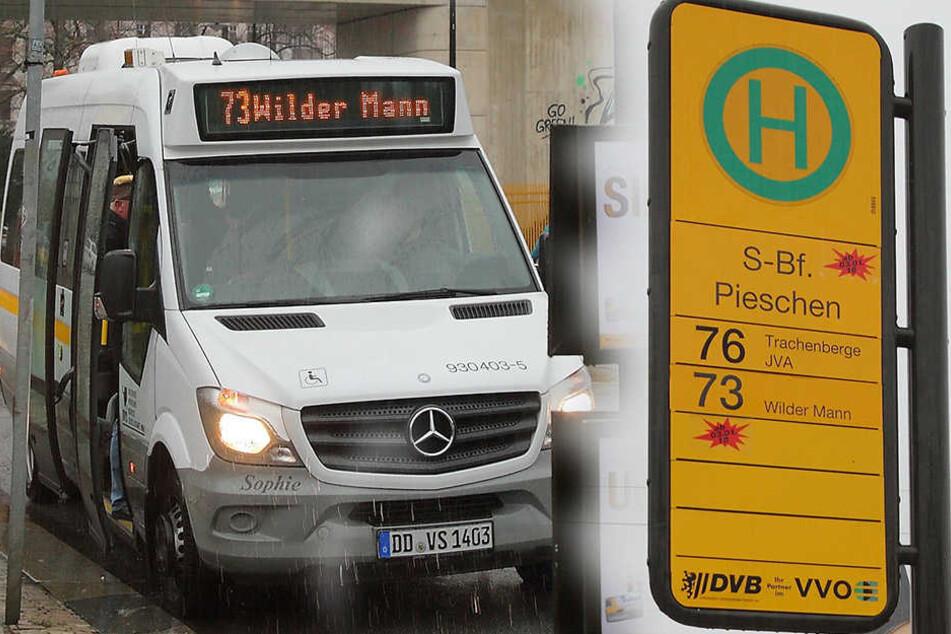 Anfang Januar geht die neue Buslinie 73 mit einem Kleinbus in den Testbetrieb.