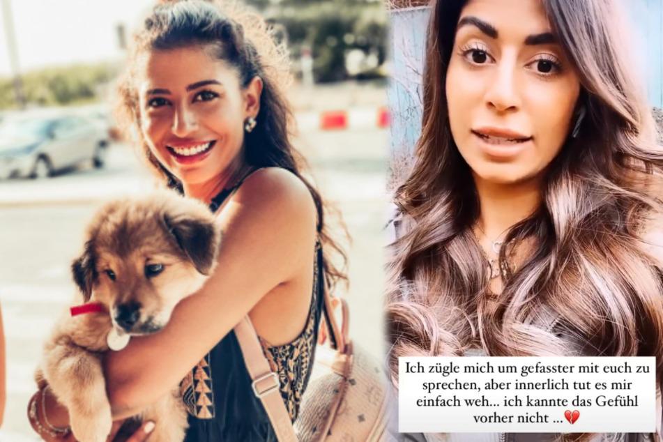 Eva Benetatou (28) hat seit Ende August einen Welpen. (Fotomontage)