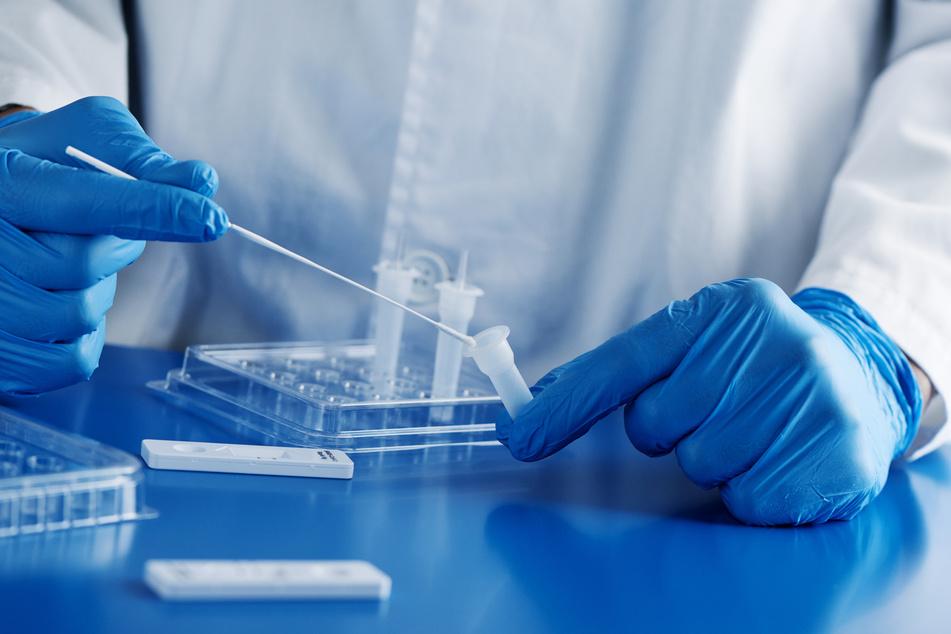 Diskussion in sozialen Netzwerken: Sind PCR-Tests verfassungswidrig?