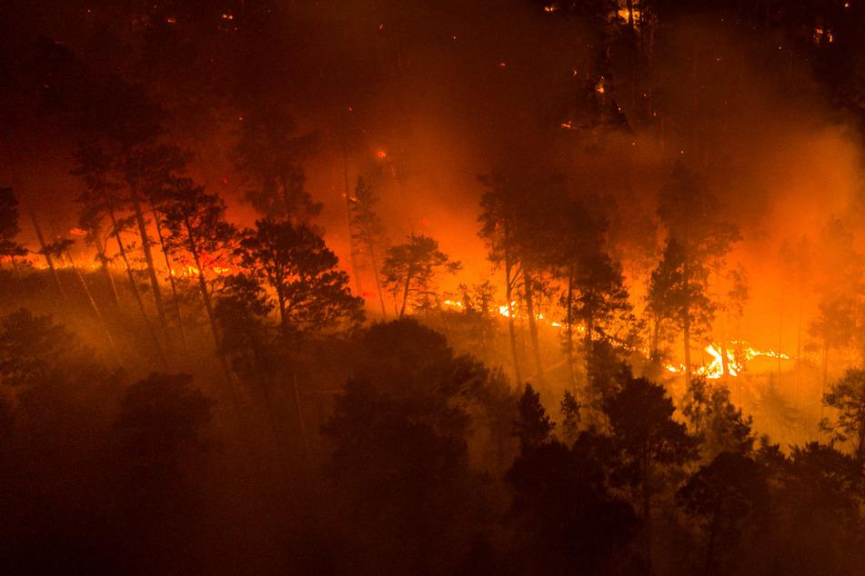 Ein Waldbrand in Sibirien, die Temperaturen lagen dort im Juni zehn Grad über dem für diese Zeit erwarteten Durchschnitt. (Archivbild)