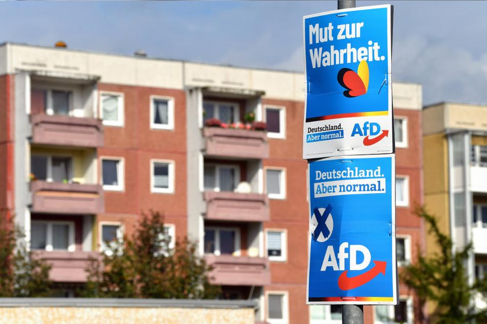 Die sächsische AfD konnte mit ihrem Wahlkampf ihre Wähler zwar behalten, doch kaum neue gewinnen.
